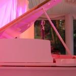 piano_rose.jpg
